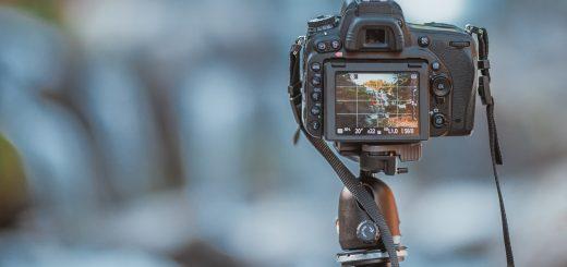 【一眼レフカメラ】望遠レンズを使った撮影のコツを大公開!