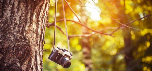一眼レフカメラでピントを合わせるための設定をご紹介!